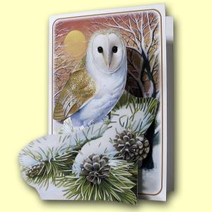 PIC406 Barn Owl