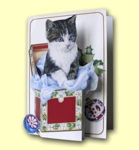 Christmas Kitten in Box