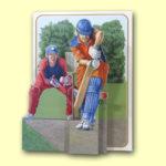PIC214 Cricket