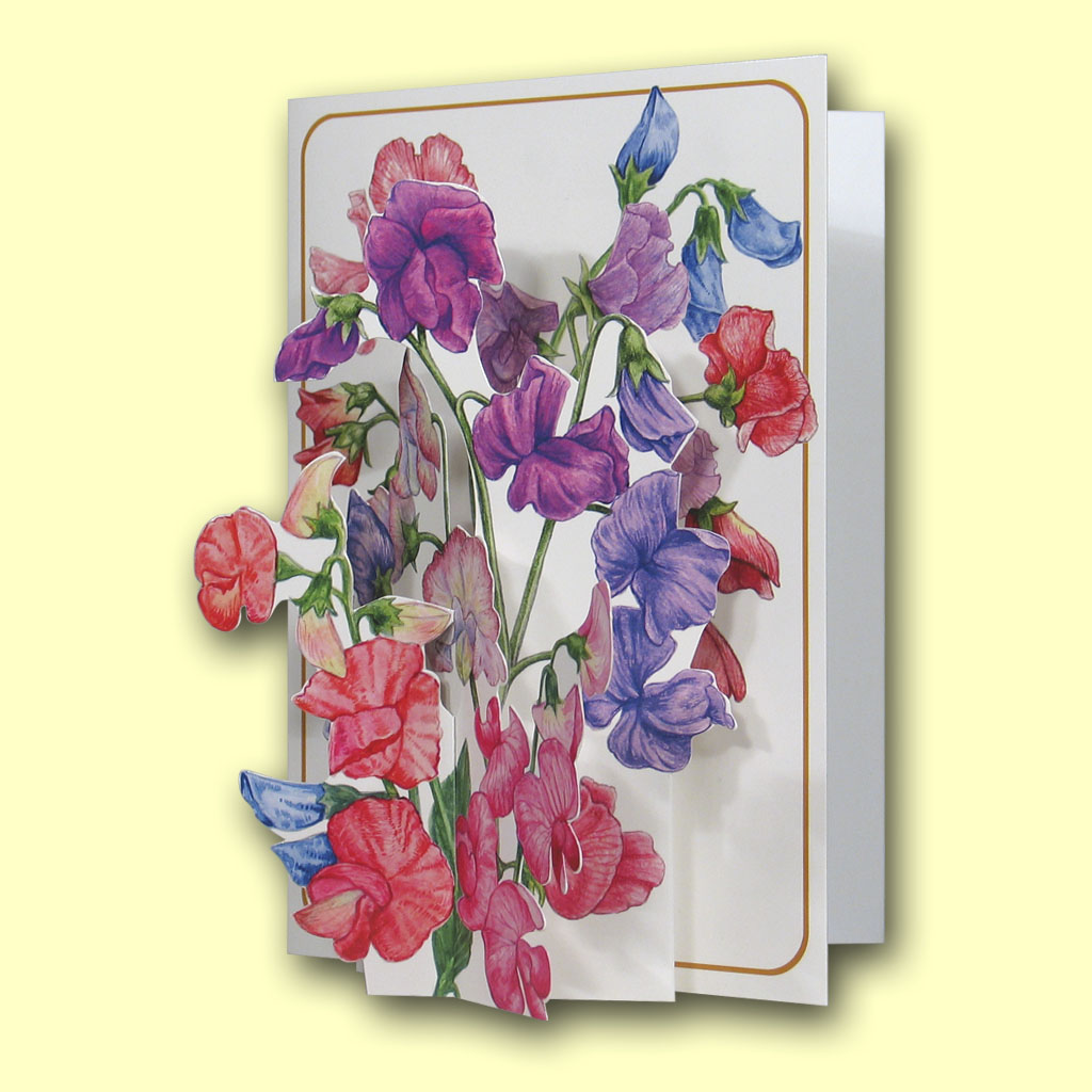 The pictoria press 3d pop up greetings cards card gallery pic202 sweet peas m4hsunfo